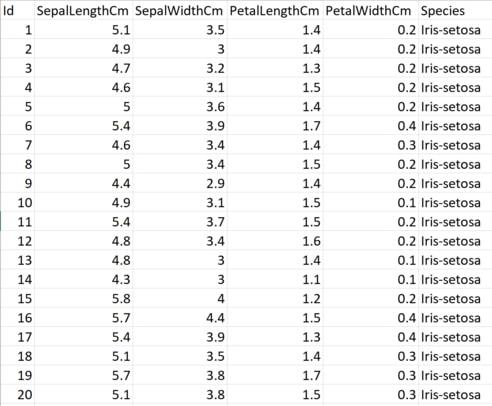 The Iris Dataset Snapshot